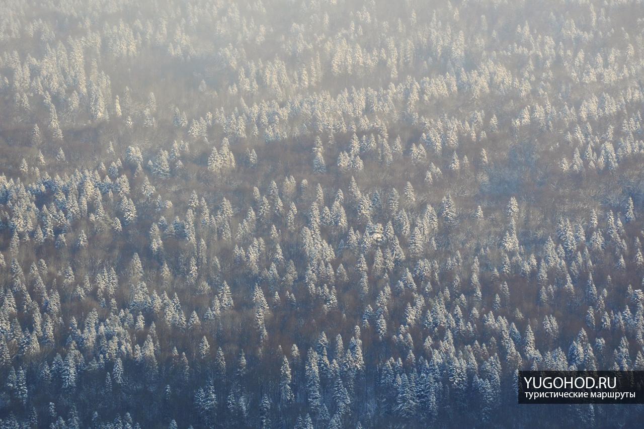 Вид с Орлиной полки зимой