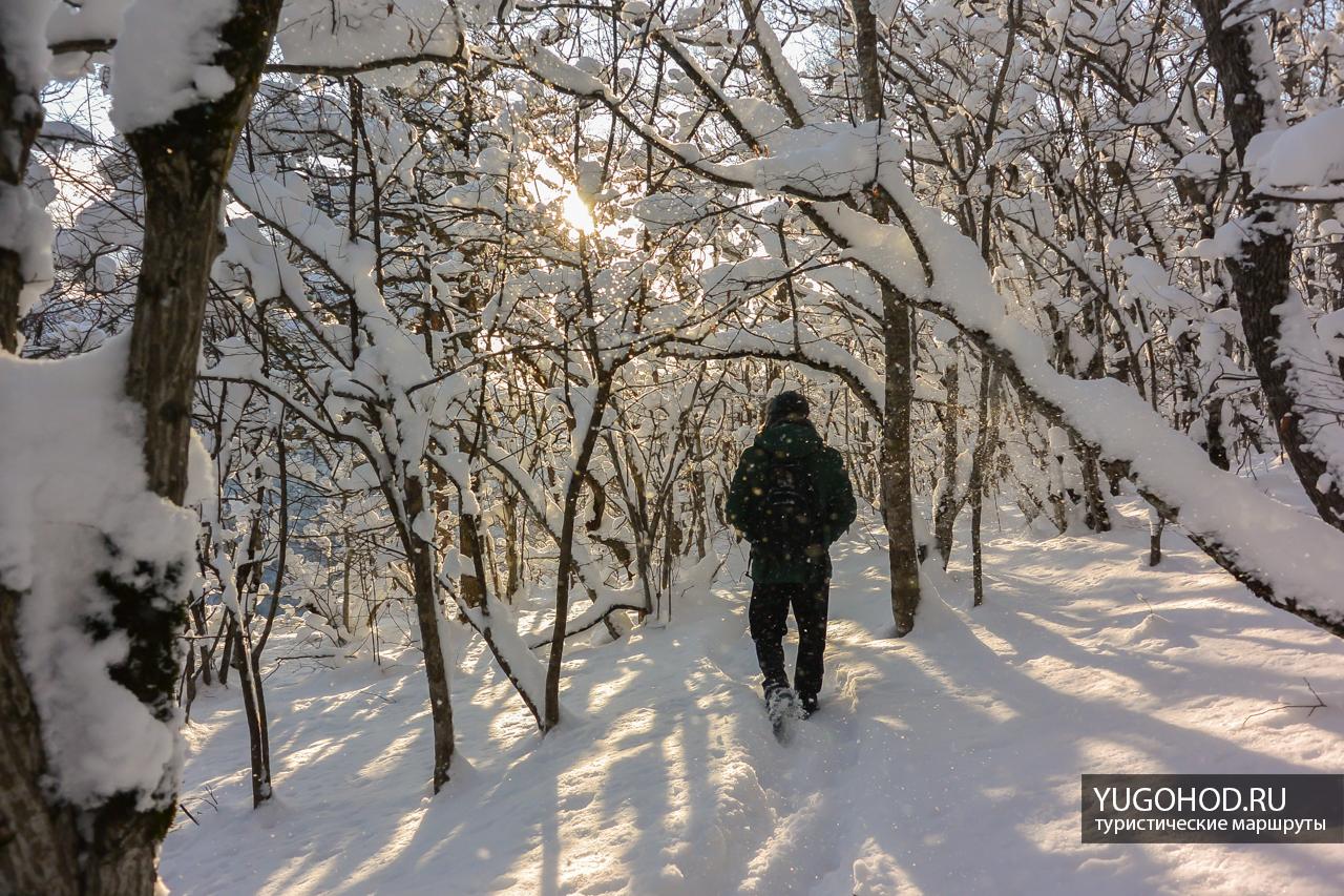 Тропа к Орлиной полке зимой