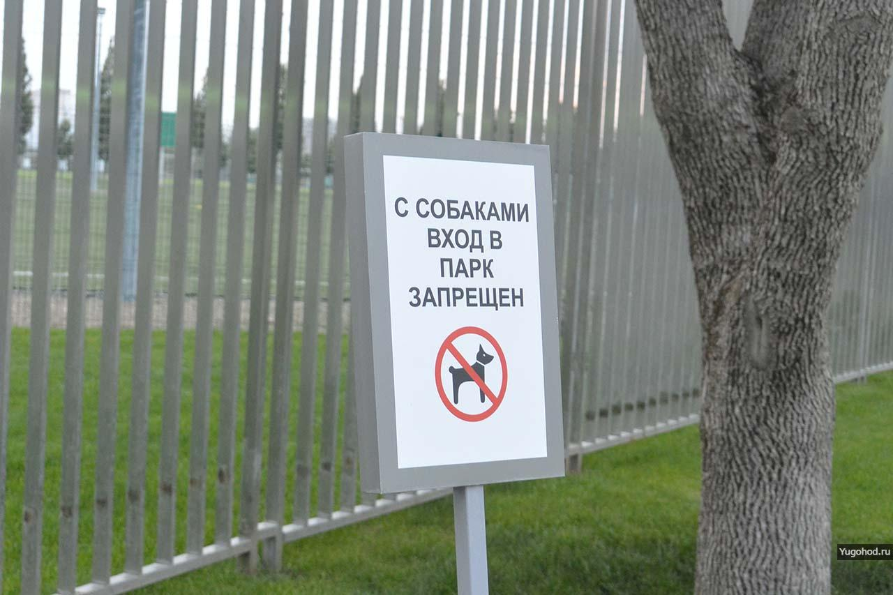С собаками вход в парк запрещен